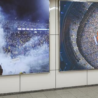 Sports Display Peelis.png