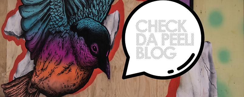Peeli Blog header image wih Peeli bird graphic on wall