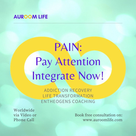 PAIN: Pay Attention, Integrate Now!