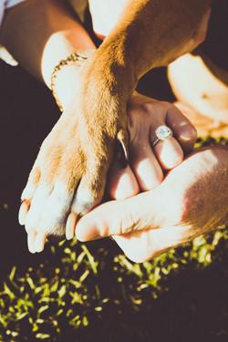 Engagement-B22A7713