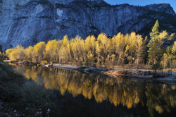 Reflection - Yosemite Valley