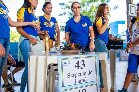 FEIRA DE CIENCIAS (8).jpg