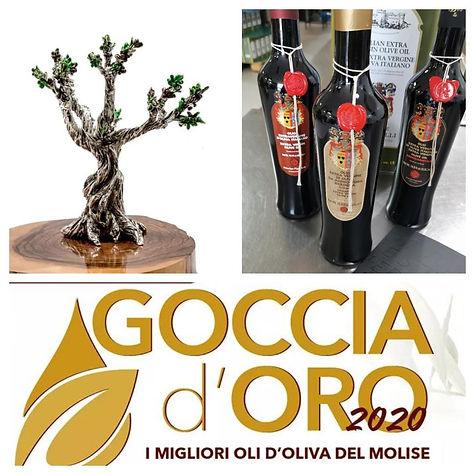 Best Olive oil in Molise Goccia d'oro 2020 extra virgin olive oil