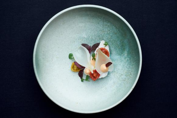 wix-food-02.jpg