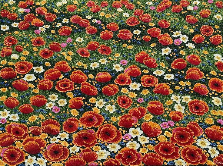 """Poppy Field 48"""" x 36"""" x 1"""""""