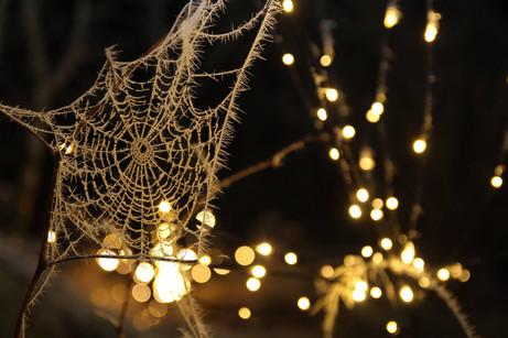 Julehøytid, glede og sorg