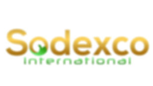sodexco - logo .jpg