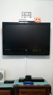 Destin TV Mounted with wiremold
