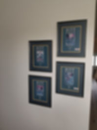 CTech Picture hanging services
