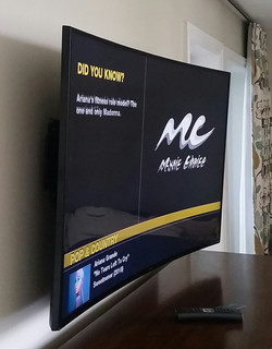 Mirimar Beach Curved TV Mounted