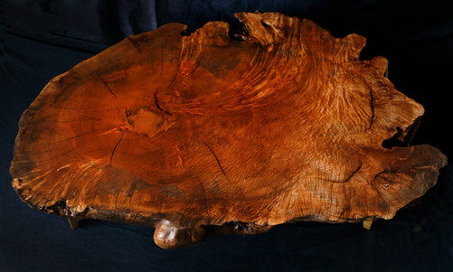 250+ Year Old Maple Cookie Slab Coffee Table