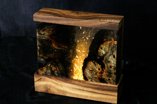 Burned Buckeye Burl Night Lamp