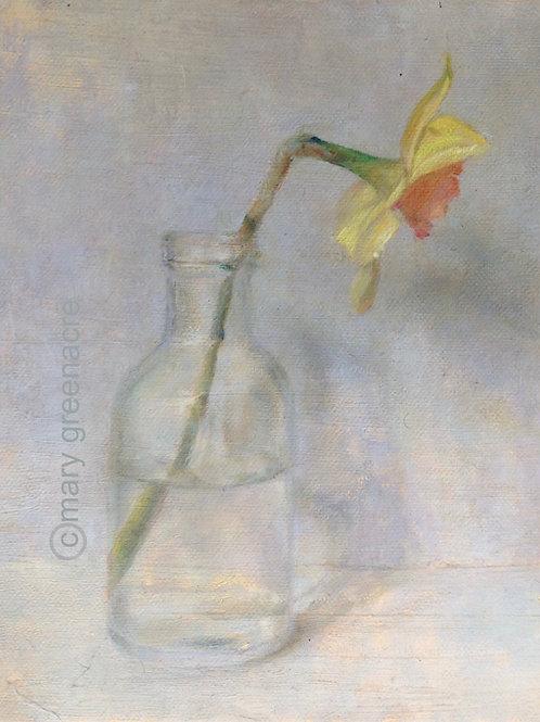 'Jonquille' (Daffodil) Peinture originale