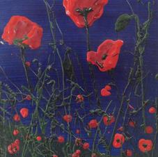 Barratt 'Poppy Field'