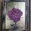 Thumbnail: Rose 2
