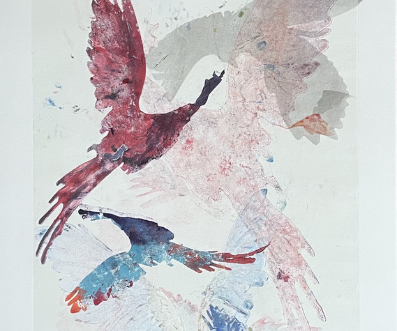 Feathers, Flight and Song