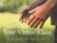 Online lessons.jpg