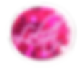 Lolita%20znak_edited.png