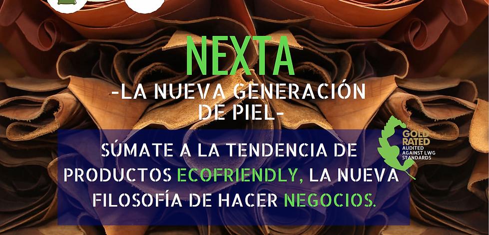 nx8.PNG
