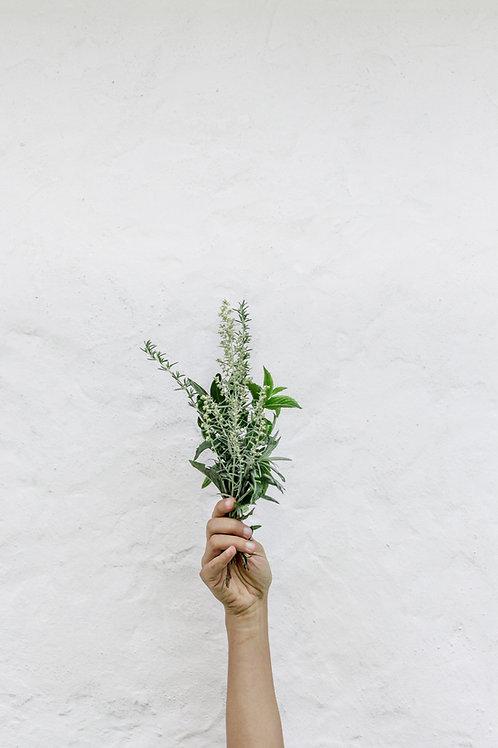 Initial Herbalism Consult (Individual)
