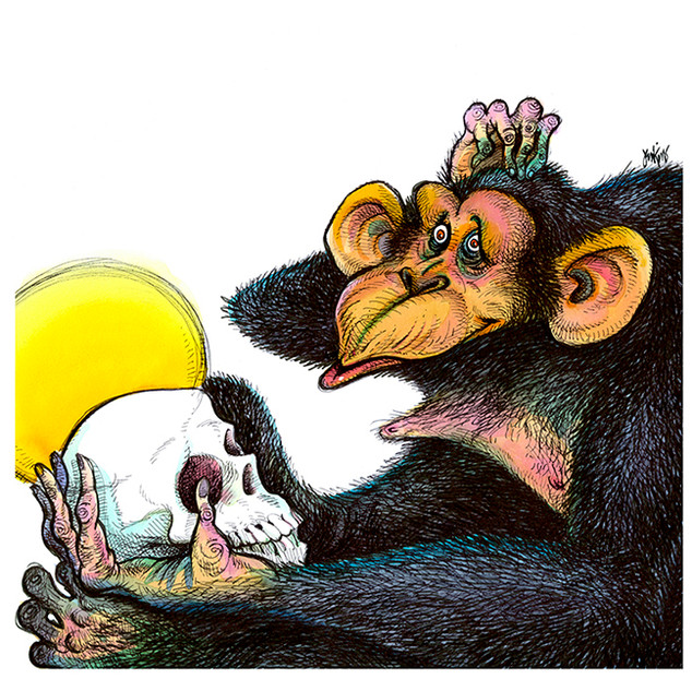 chimpSUB.jpg