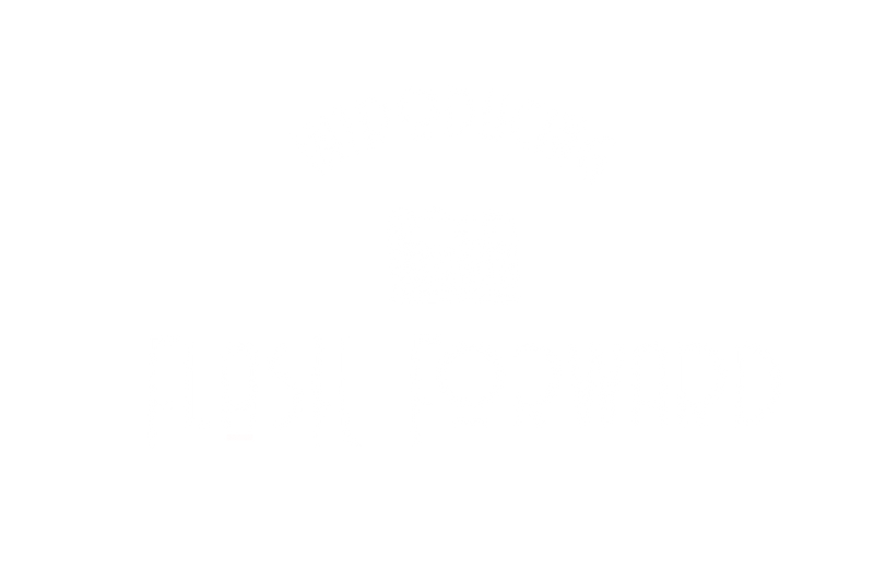 Introducing Flash Forward_White Transpar
