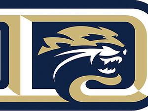 Cougar D Logo.jpg