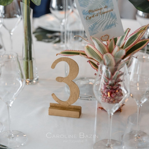 tropical wedding(2).jpeg
