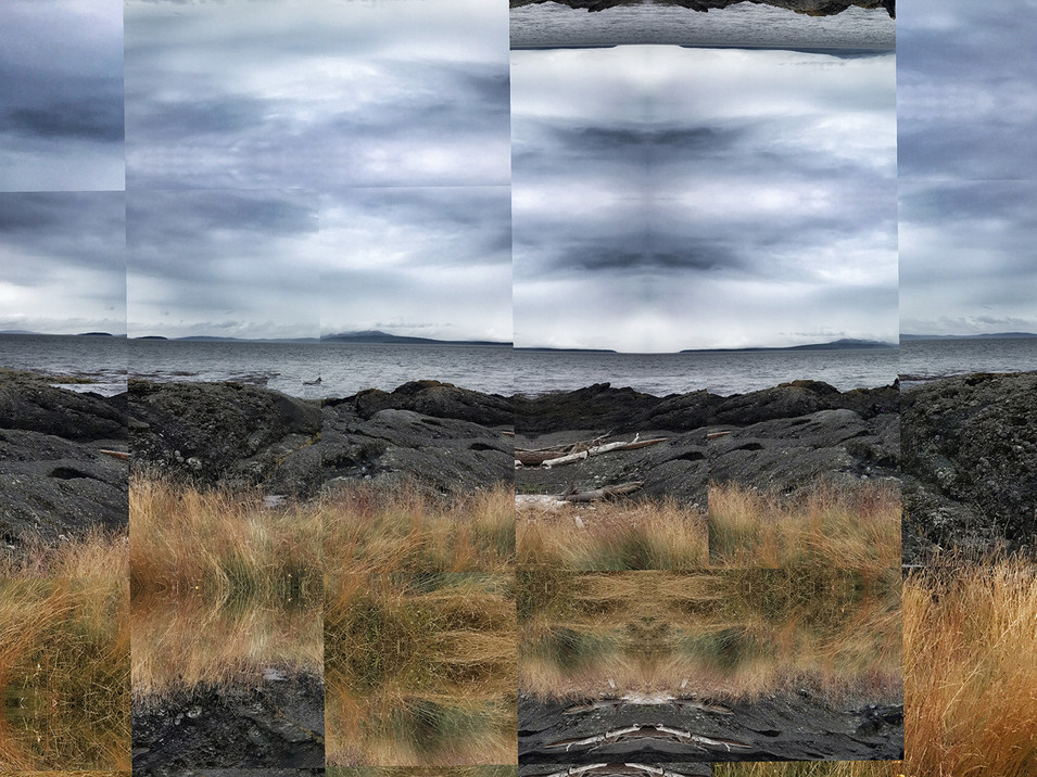 Fragmented Landscapes