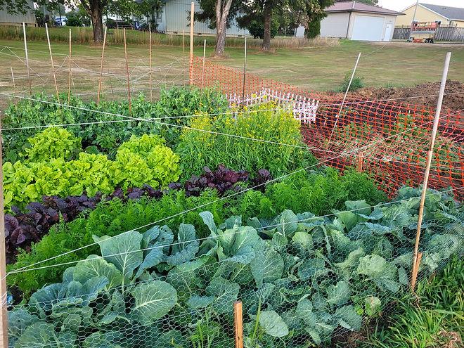 TUMC Gardening.jpg