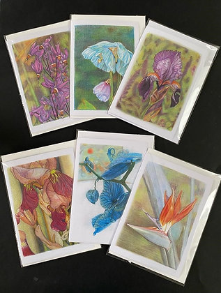 Floral series - set of 6 A5 cards