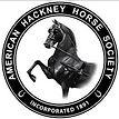 hackney logo.jpg
