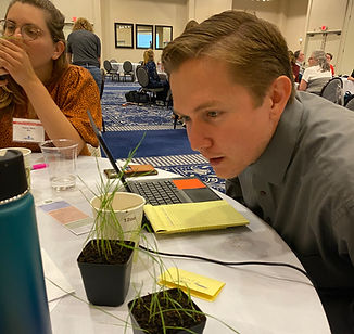 Teacher examining a plant on his table during a workshop