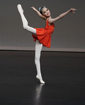 AGP 2019 Ballet Intensive Program 2020 1