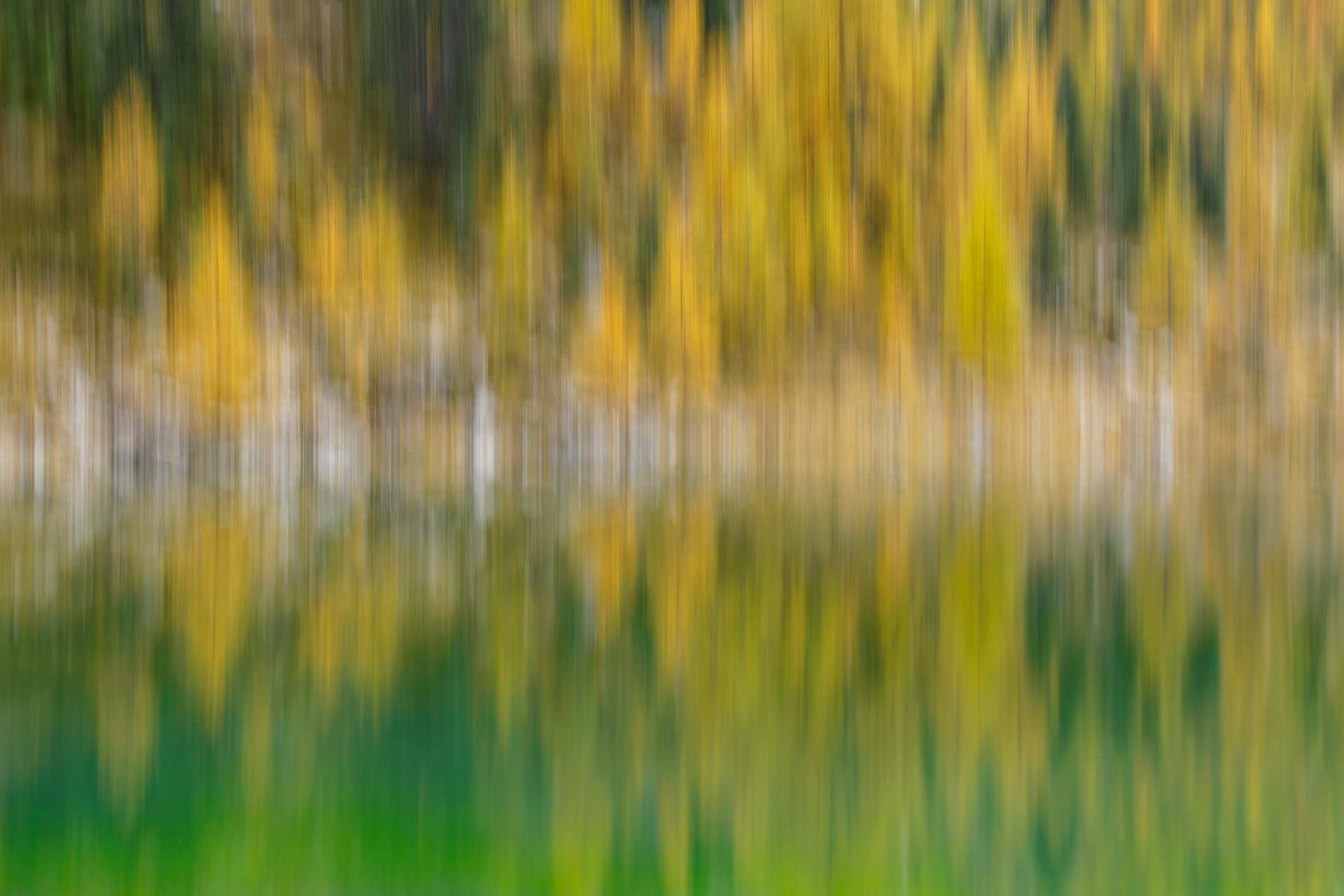 Autumn blur
