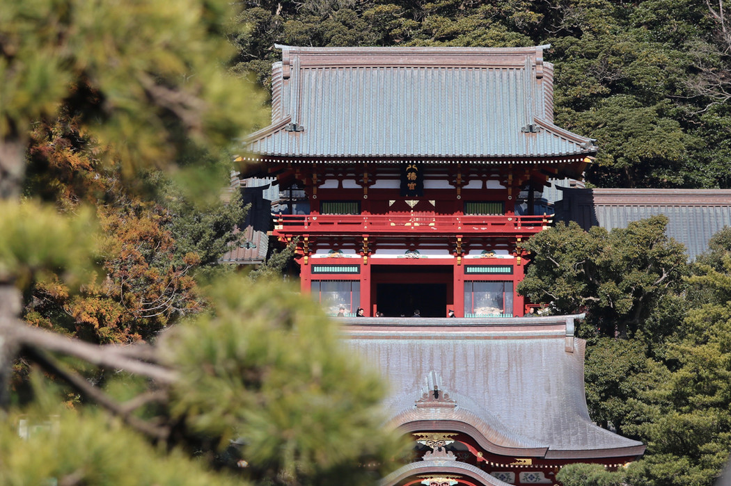 Tsurugaoka Hachiman-gu Shrine, Kamakura
