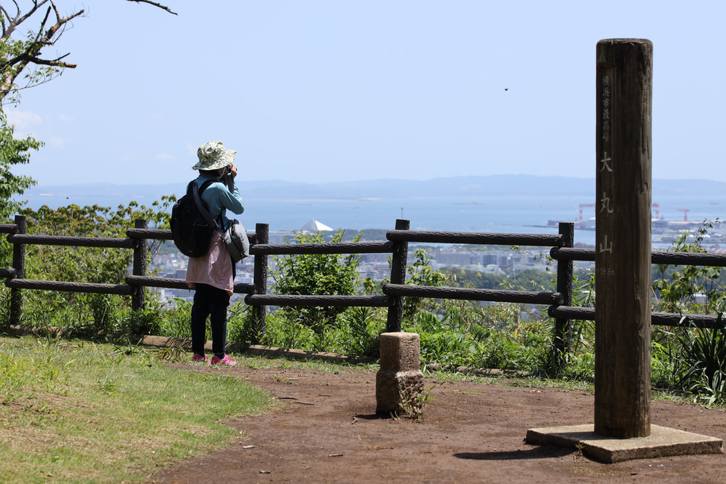 A hilltop in Yokohama