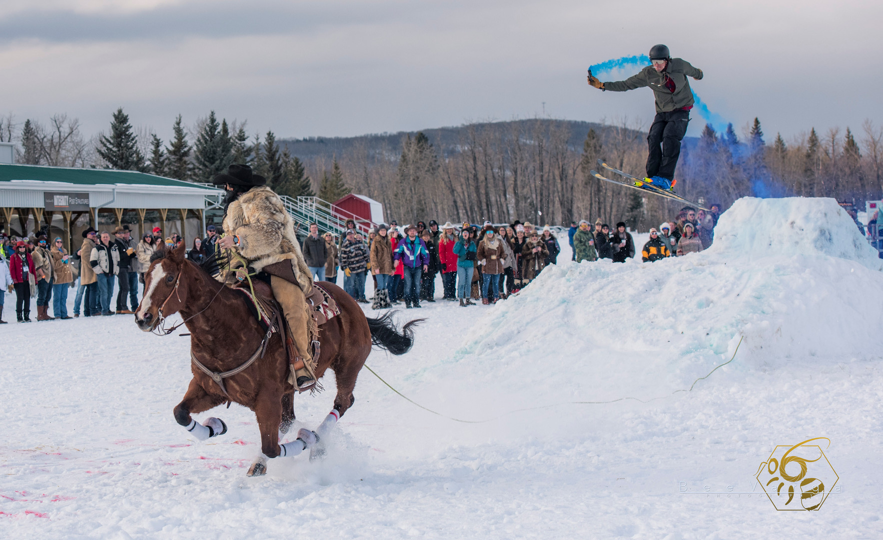 Jill Barron, Skijor in Millarvillage. January 2020.