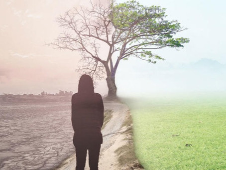 Bereavement for the 'COVID Generation'
