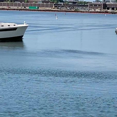 FenderBuckets, Protecting those Beautiful MJM Encore Casino Shuttle Boats