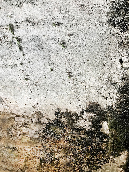 007 Limestone Abstracts copyright Gwen S