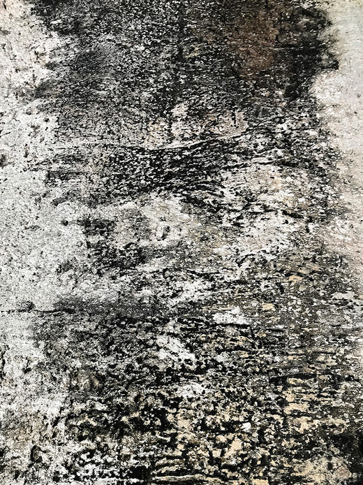 009 Limestone Abstracts copyright Gwen S