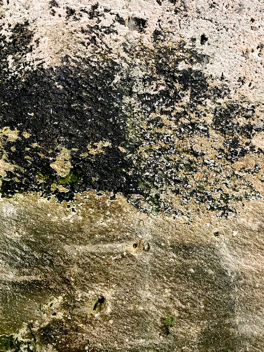 004 Limestone Abstracts copyright Gwen S