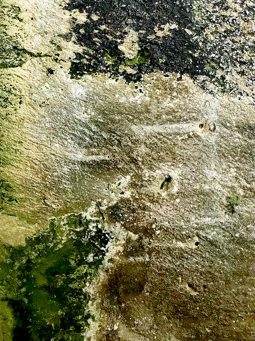 005 Limestone Abstracts copyright Gwen S
