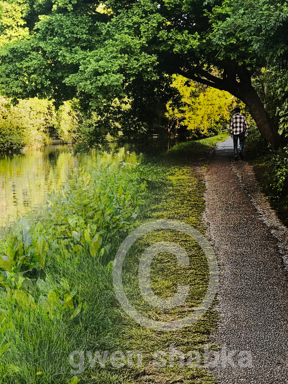 6 - Tow Path Grand Union Canal