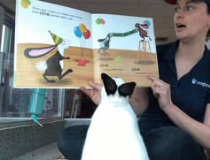 MSPCA Story Time