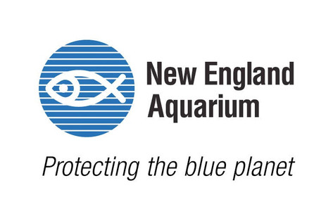 Virtual Visits/Visitas Virtuales - New England Aquarium