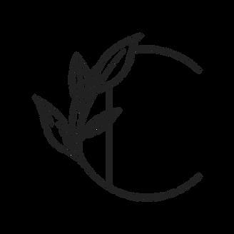 Logo_Institut-de-Cloe_icone_noir.png