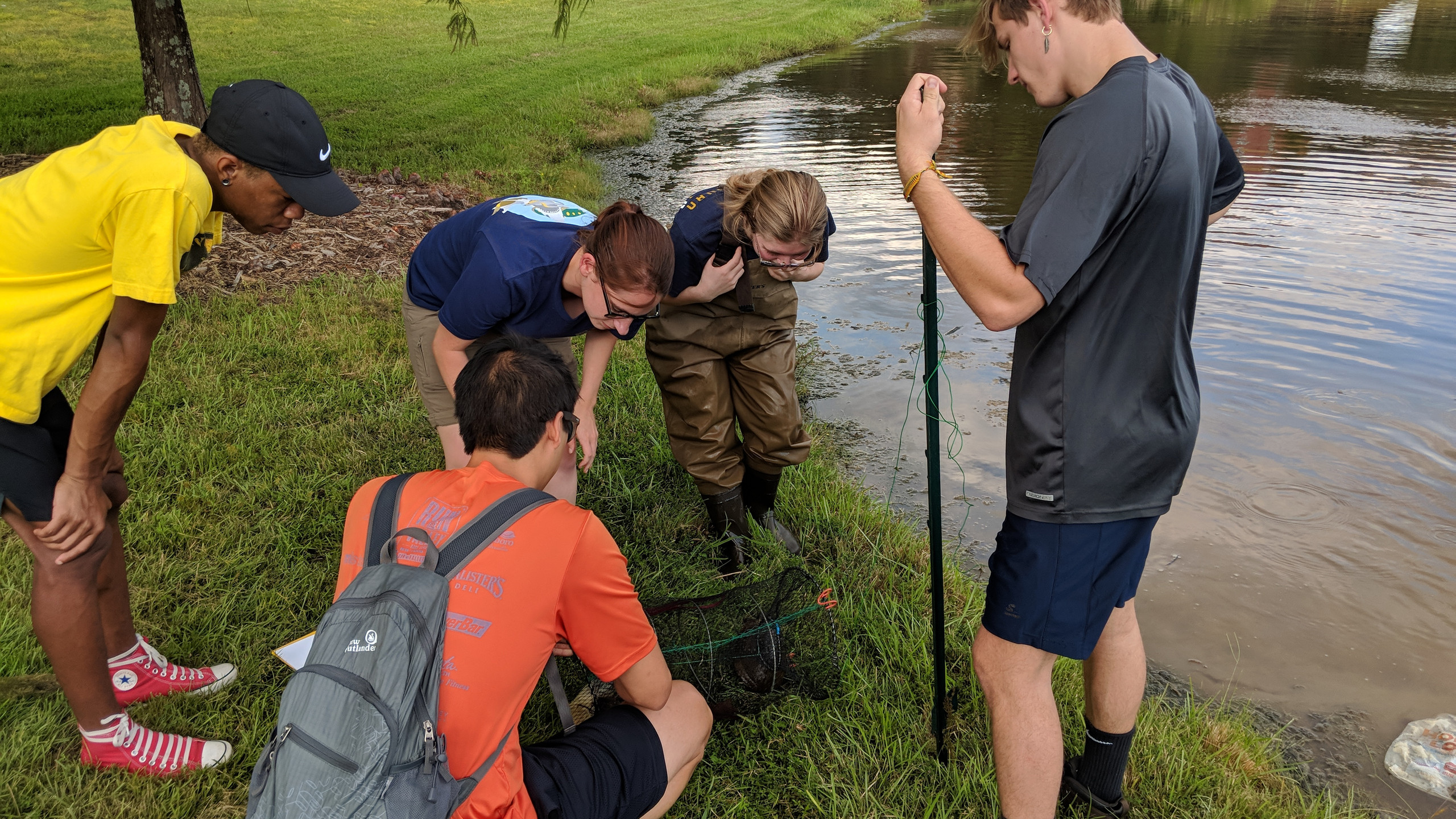 Pond survey
