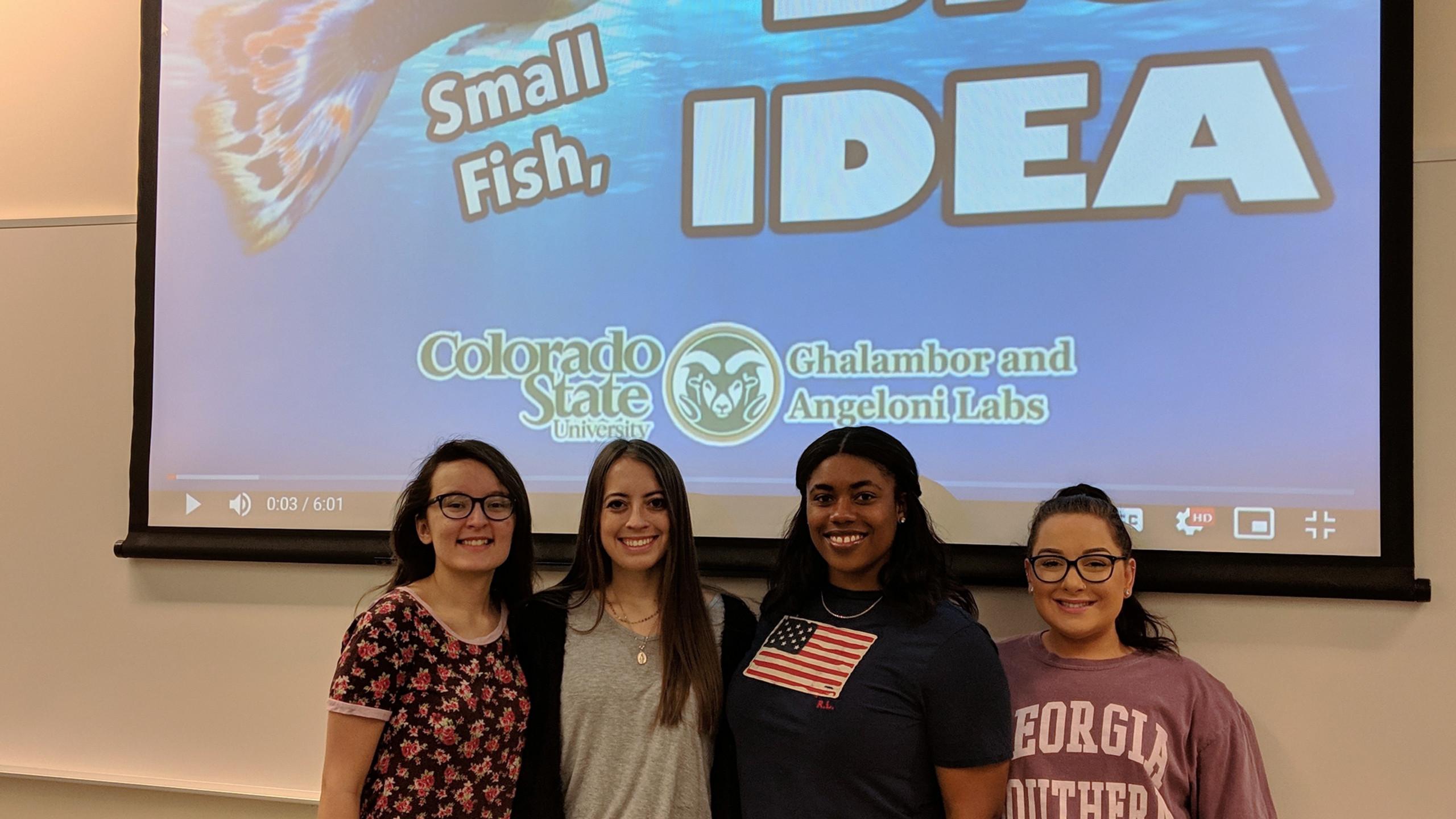 STEM Field experience 2019